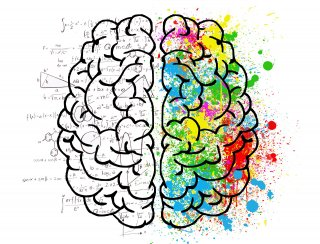 Neuromarketing: la storia, gli strumenti e le tecniche per una strategia di vendite vincente